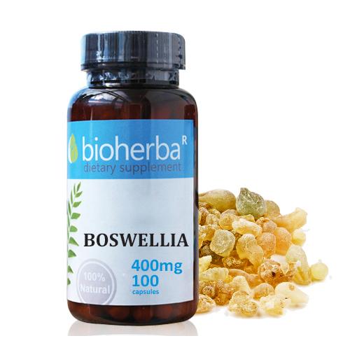 Биохерба Босвелия 400 мг