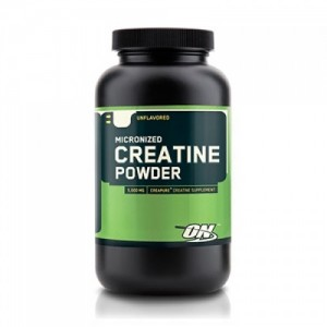 Optimum Nutrition Creatine Powder цена