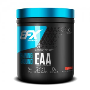 EFX Training Ground EAA