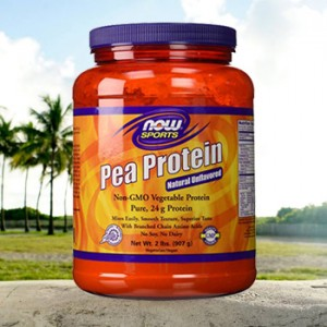 fitness dobavki Растителни протеини