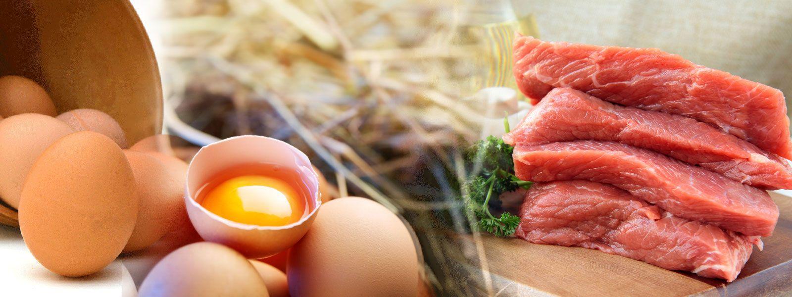 Кои са най-добриете предложения на суроватъчния протеин. Купи суроватъчен протеин на Топ Цена от fitnessdobavki.bg