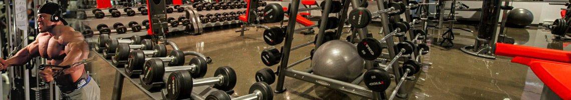 Кои са най-добрите протеини за покачване на мускулна маса-Избери сега от fitnessdobavki.bg на Топ Цена