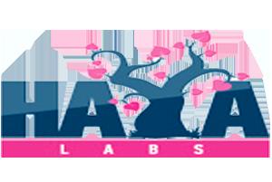 Haya Labs Astragalus 500 mg 60 caps